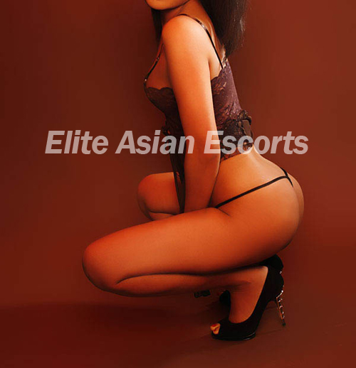 elite asian escorts escort agency